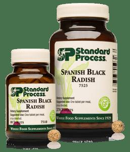 7510-7525-Spanish-Black-Radish-Family